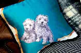 Blue Pups